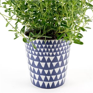 Triangle planter - blue