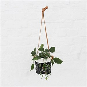 Hanging soft pot - white lines